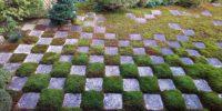 東福寺お庭